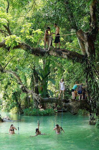 Where's Tarzan??