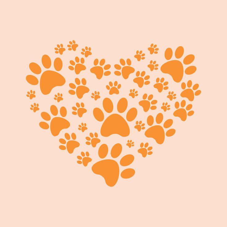 Patitas es un Club dedicado a los dueños que quieren sacar a pasear a sus mascotas (perritos) para socializar y conocer nuevos amigos para ambos. Nos reuniremos tres días a la semana en el Templo Expi