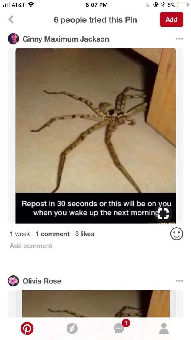 Oh Hell No!  Not risking it lol