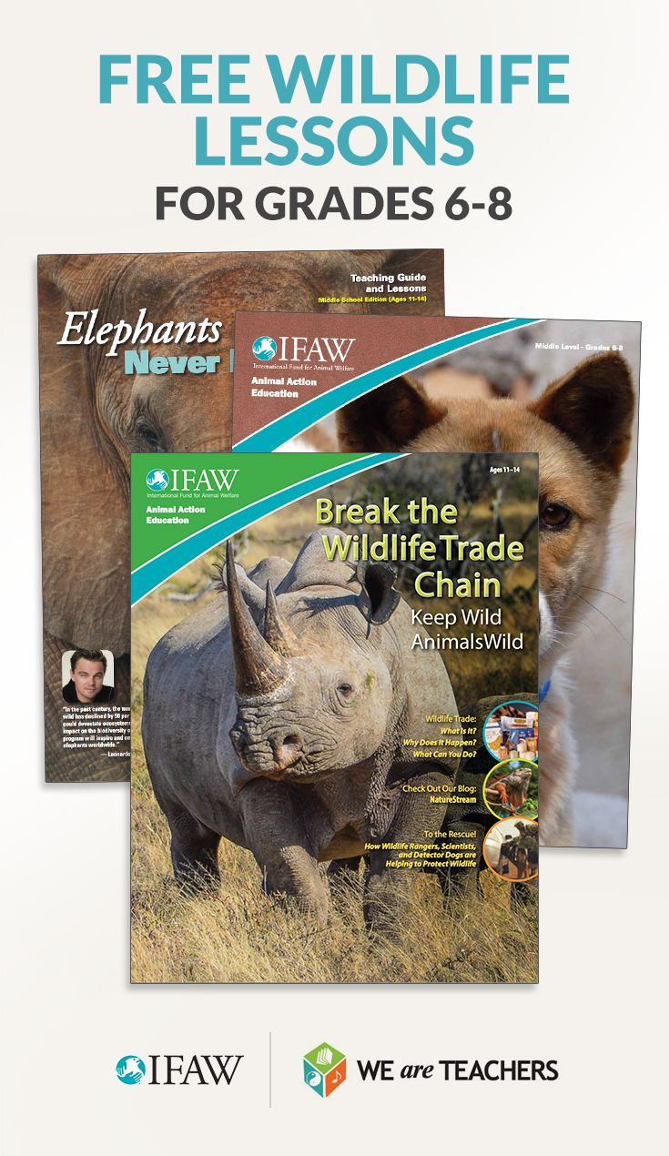 Download free animal lessons, student magazines, and more for middle school science, math, and ELA