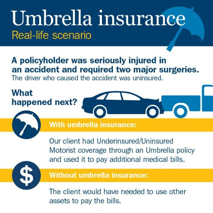 Pin By Painter Legend On Insurance Car Insurance Comparison