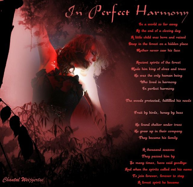 Within Temptation - In Perfect Hamony
