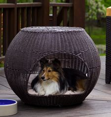 wicker igloo for dog: Dogs Beds, Outdoor Beds, Indooroutdoor, Outdoor Cushions, Dogs House, Indoor Outdoor, Igloo Pet, Pet Beds, Doggies Beds