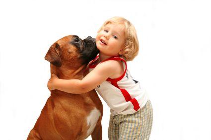 Las 5 razas de perros más recomendadas para los niños