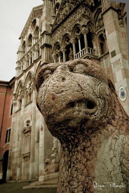 Il Leone del Duomo by @FilippoPollastri, Ferrara ,, Ferrara province, Emilia…