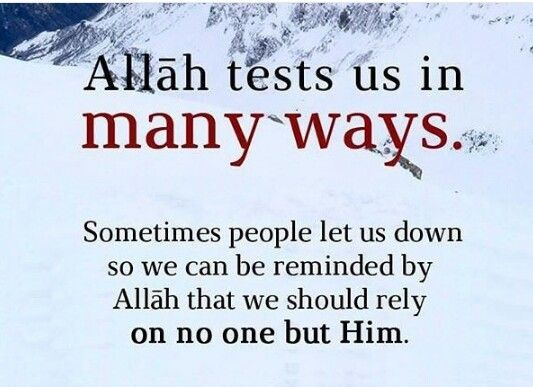 Rely on Allah alone. Allah u akbar