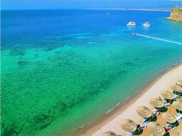 Reef Oasis Beach Resort Sharm El Sheikh, Egypt House reef has manta ray, eagle ray, thousands of reef fish...amazing...and all just 30ft from the shore