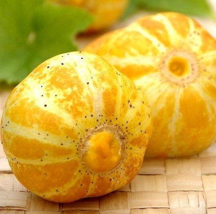 Organic Lemon Cucumber Heirloom Vegetable Seeds on Etsy, $2.25