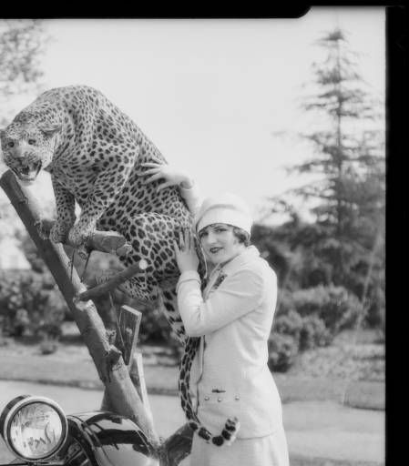"""Chevrolet with stuffed leopard at Exposition Park, Los Angeles, CA, 1926 :: """"Dick"""" Whittington Photography Collection, 1924-1987"""