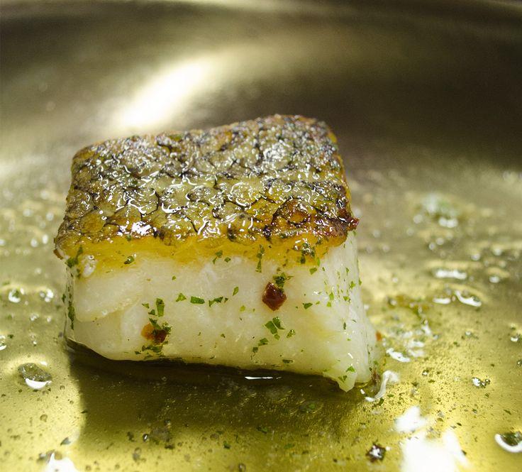 www.CarranzaPhotography.com  Filete de pez Mero chileno a las finas hierbas de Asia Restaurante Tempo, Paradissus Cancún foto para Revista Cancunissimo