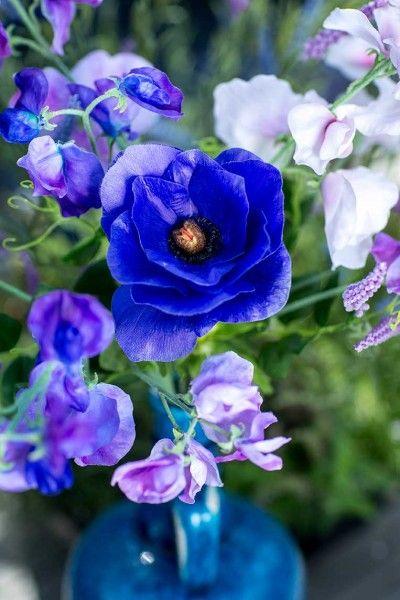 Blue Collection - Silk-ka