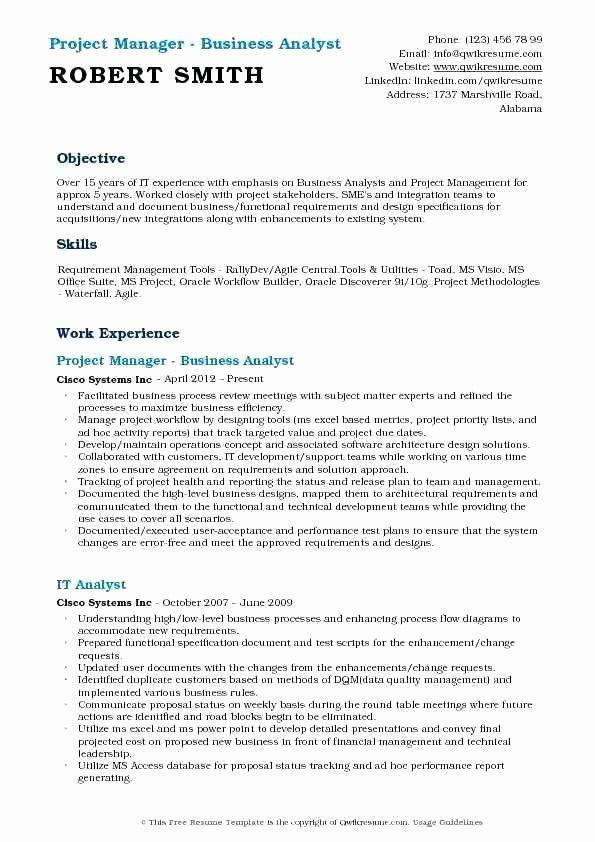 Beautiful Salesforce Business Analyst Resume Awesome Entry Level Business Analyst Resume Sales Resume Examples Business Analyst