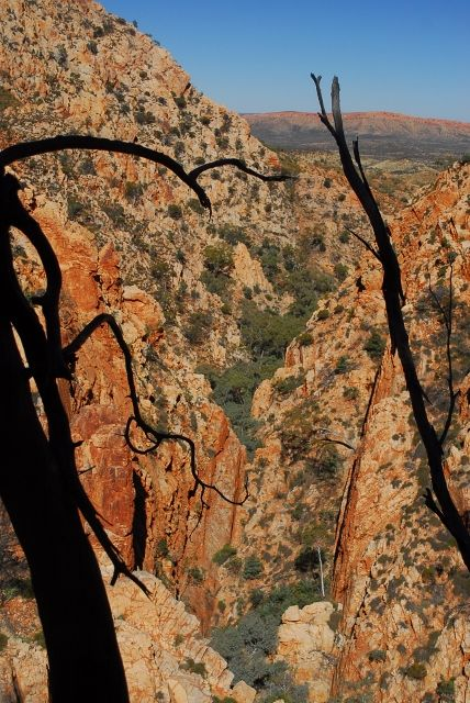 Standley Chasm seen from a high point beyond where tourists normally go