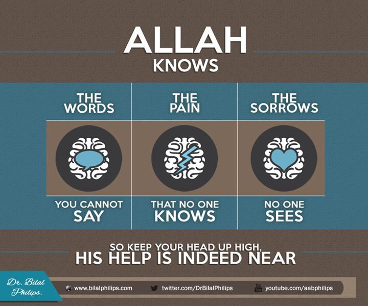 Allah knows