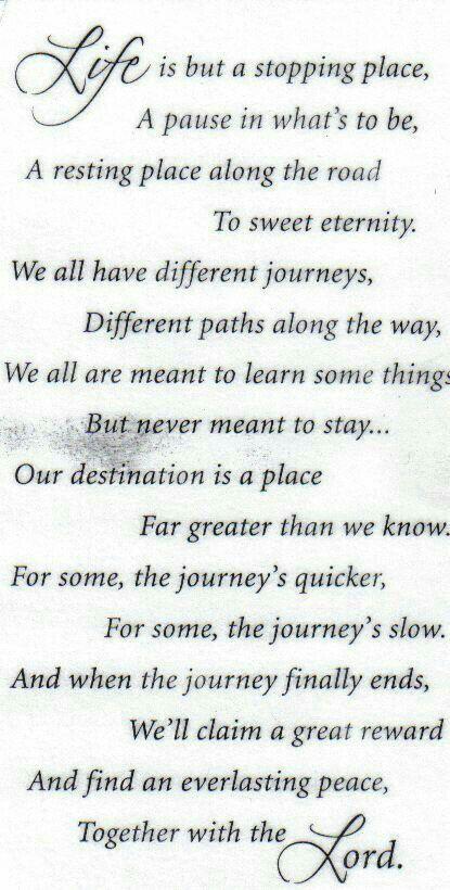 Life's Journey                                                       …
