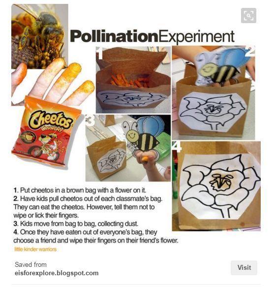 556 besten 1st grade ideas Bilder auf Pinterest | Schule ...