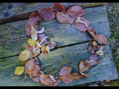 Autumn leaves are falling down - song for young children!