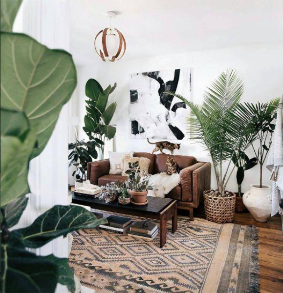 Urban Jungle Rug: 17 Best Ideas About Jungle Room On Pinterest