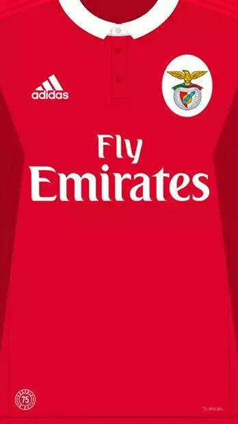 Benfica 17-18 kit home