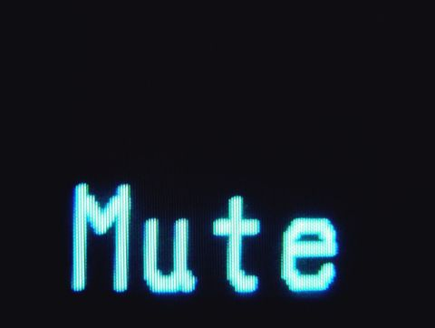 Sometimes I wish we had mute buttons like this for real life.