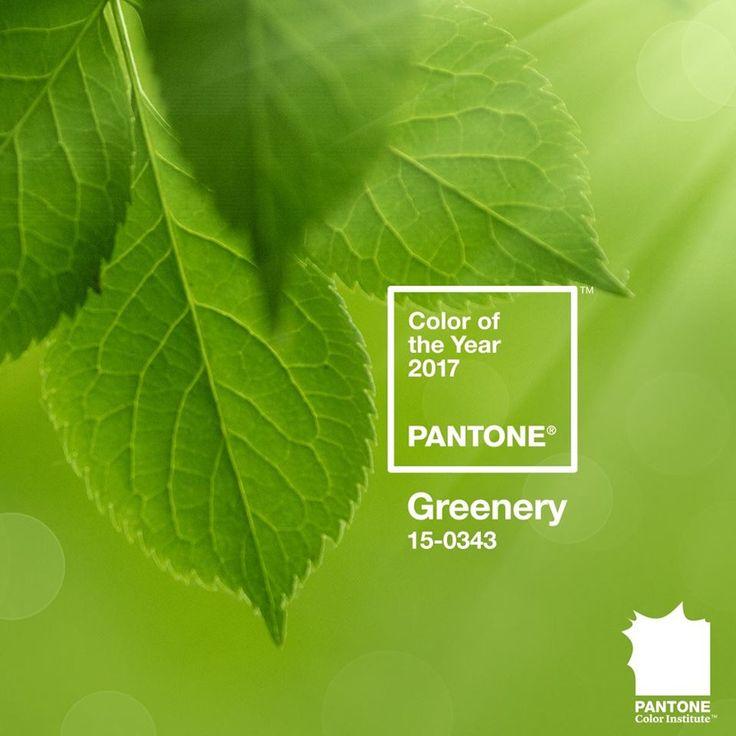 Color of the year 2017           Pantone Greneery 15-0343