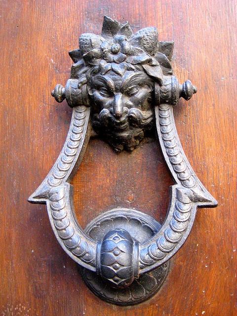 1362 best Keys, knobs & knockers images on Pinterest | Lever door ...