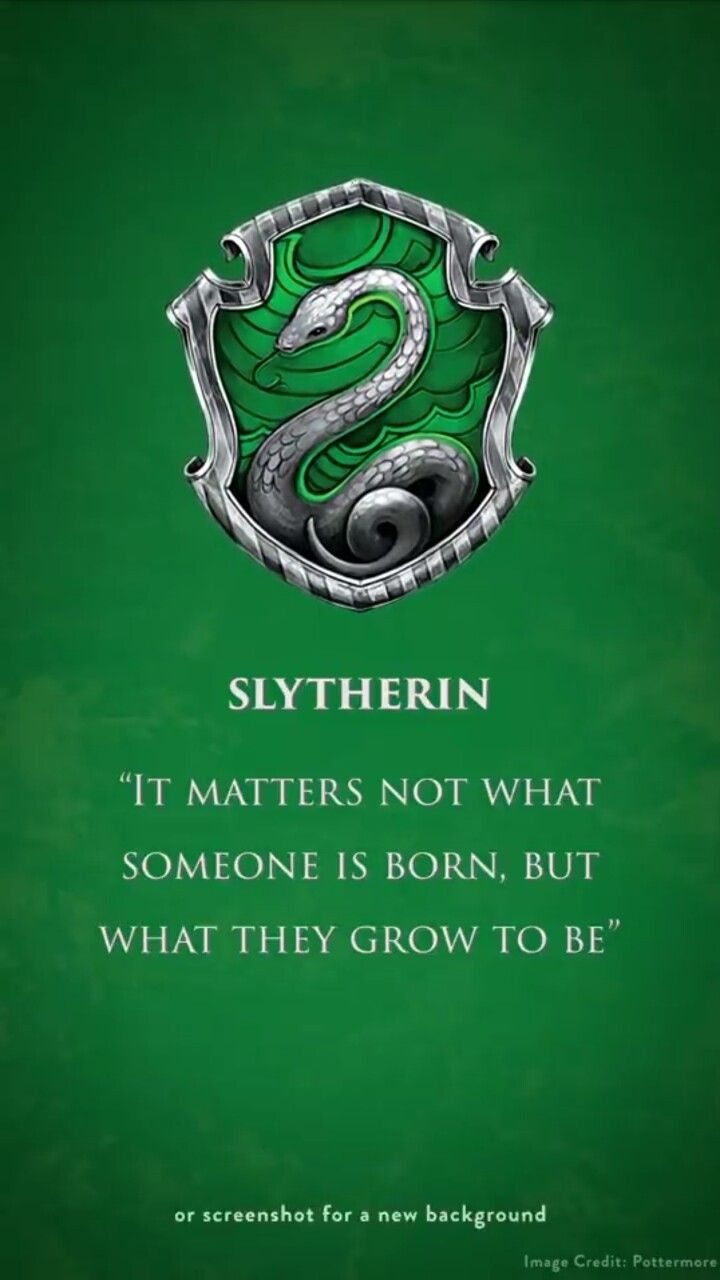 Pin By Judy Lingerfelt On Books Hp Slytherin Slytherin Harry Potter Slytherin Pride Slytherin