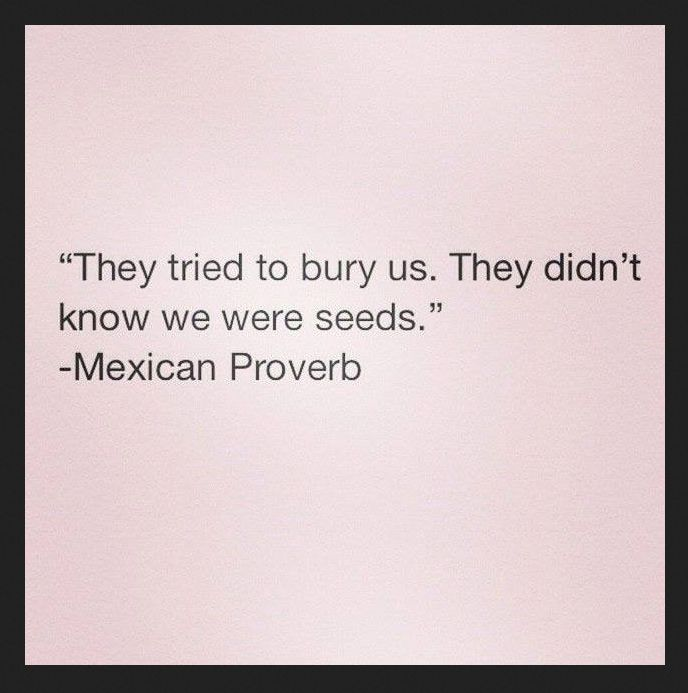 They tried to bury us. They did not know that we were seeds. quotes. wisdom. advice. life lessons. mexican proverb