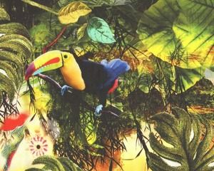 Edler Baumwoll-Stretch-Satin JUNGLE GREEN, exotische Vögel, gelb-moosgrün