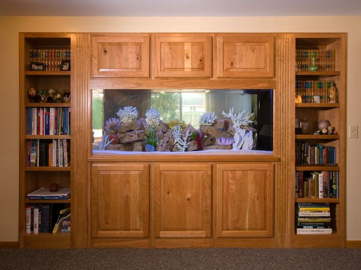 Two sided aquarium in basement finish by j s brown co for Bookshelf fish tank