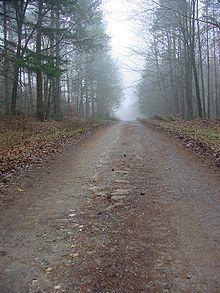 Via Regia between Fulda and Neuhof in Hesse, Germany - Via Regia - Wikipedia