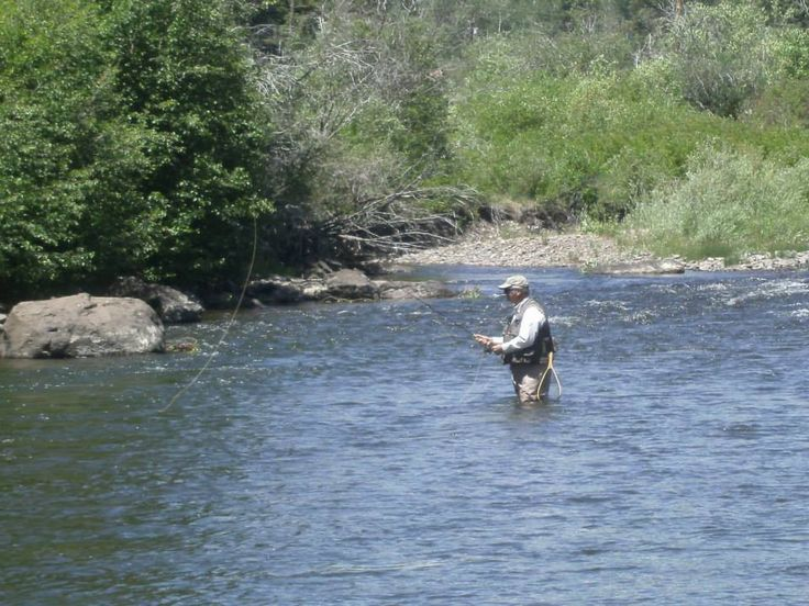 127 best images about fly fishing on pinterest for Taylor fly fishing
