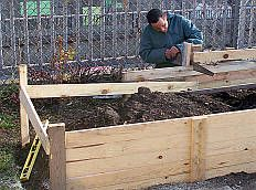 a page with tons of resources for DIY and education gardening resources Toronto Community Garden Network | In The Garden Shed / In The Shed cover Page