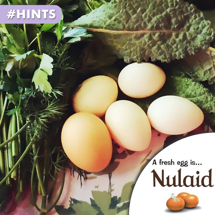 Protein, found in eggs, is needed for every part of your body: the skin, muscles, hair, blood, body organs, eyes, even fingernails and bones. #hints #healthyliving #nulaid