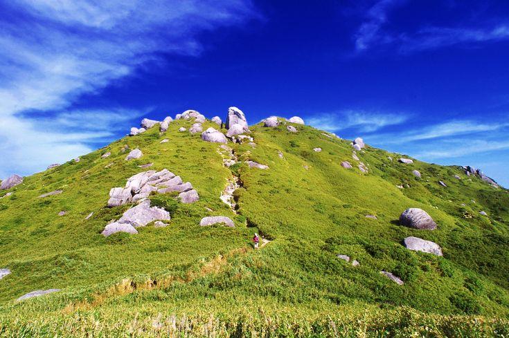 World Heritage, Kagoshima Prefecture Yakushima 世界遺産 鹿児島県 屋久島 宮之浦岳(淀川登山口)