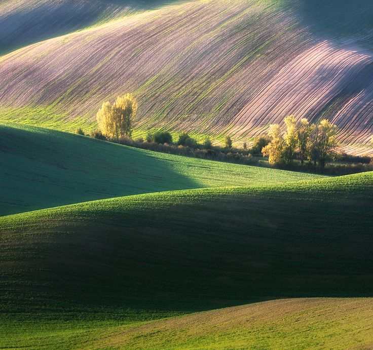 Best Fields In The Nature Images On Pinterest Landscapes - The mesmerising beauty of moravian fields photographed by marcin sobas