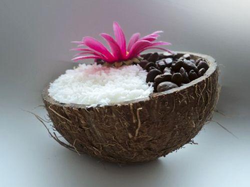 Что можно сделать из кокоса: 30 идей для творчества - Ярмарка Мастеров - ручная работа, handmade