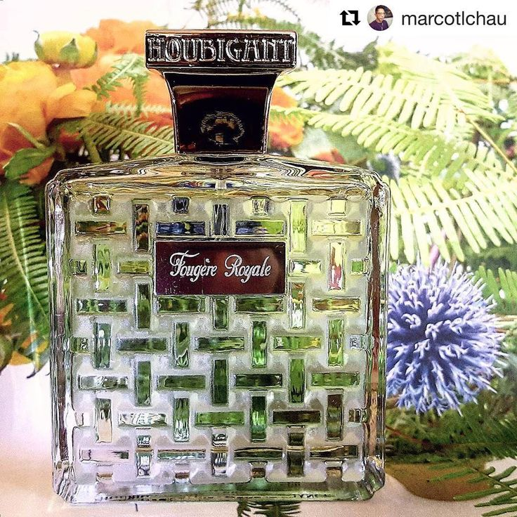 #Repost @marcotlchau (@get_repost) ・・・ My SOTD ~ #Houbigant #Paris #FougereRoyale #EaudeParfum #2010Version #RojaDove #HoubigantFougereRoyale #Parfum #perfume #fragrance #香水 #perfumecollection #ig_parfum #ig_fragrance #rosinaperfumery #shoponline : www.rosinaperfumery.com 💚