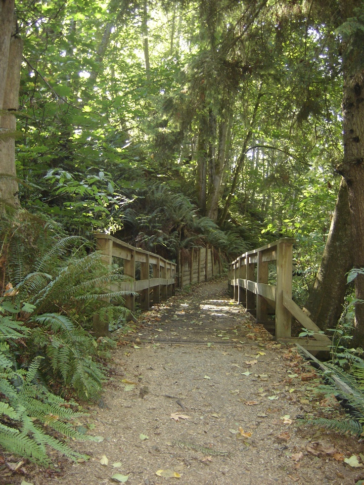 Trail in Qualicum