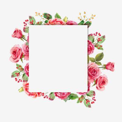 احسن الصور ورود و زهور يمكن الكتابه عليها بطاقات ورود و زهور فارغة للكتابة عليها خلفيات ورود و زهور فارغة للكتابة علي Flower Frame Flower Border Sign Art