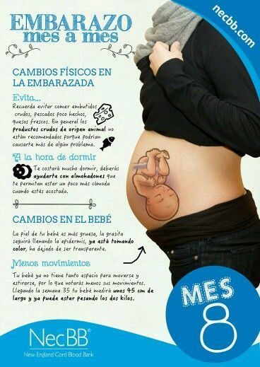 17 best images about gineco on pinterest breastfeeding positions breastfeeding and salud - Alimentos para embarazadas primeros meses ...