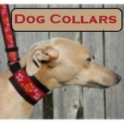 Here are some of the most amazing and cool dog collars I have ever seen! ...