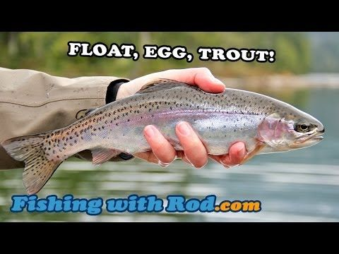 How To Catch Trout in Lakes | HubPages