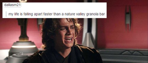 I dunno. Anakin lost basically everything in roughly one day. Even a granola bar would be hard-pressed to crumble that quickly.