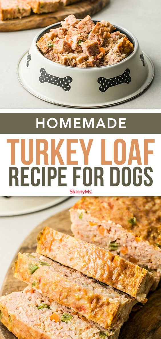 Homemade Turkey Loaf For Dogs Recipe Dog Biscuit Recipes Dog