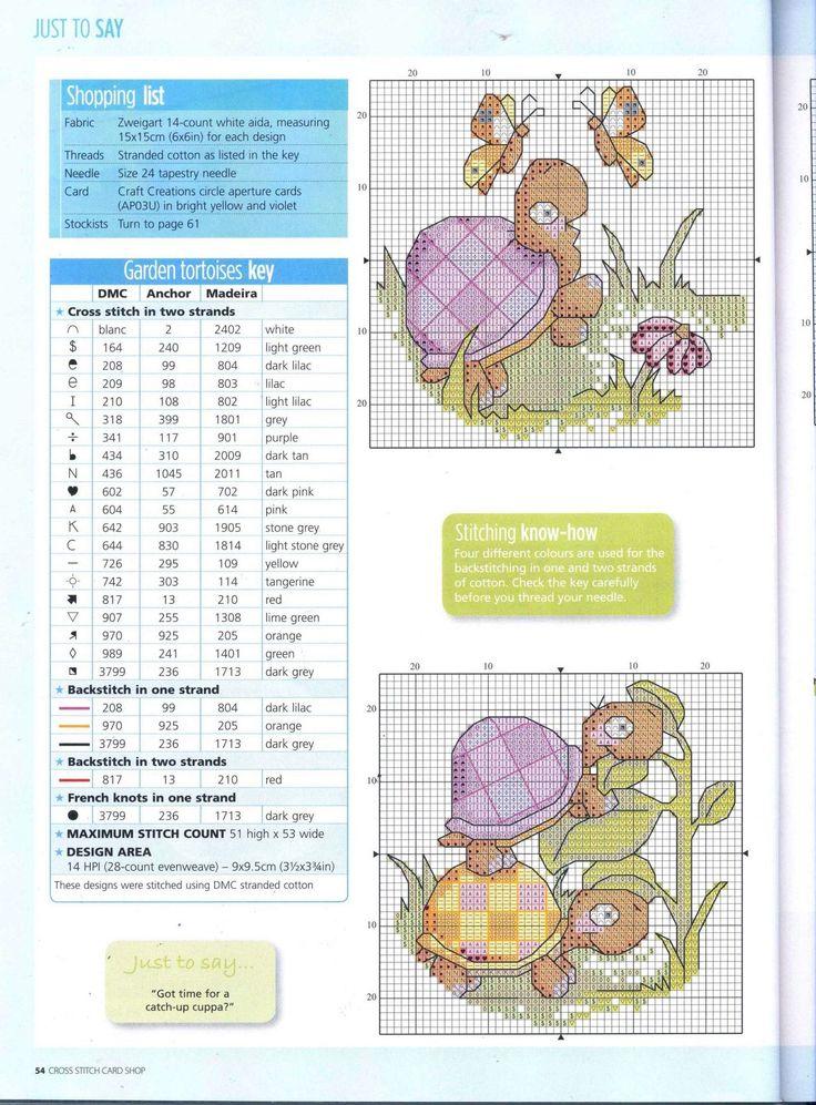 Garden Tortoises 1/3