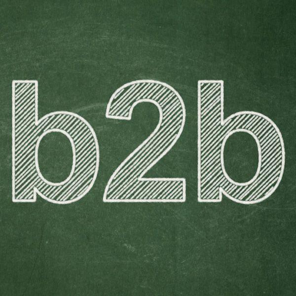 B2B Leads. http://www.lseleads.com/