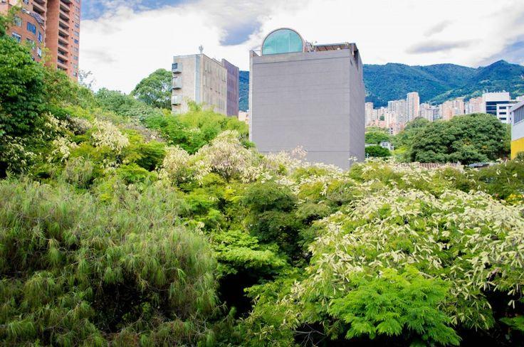 Tecnologia de informacion http://mylocal-colombia.net/colombia/medellin/antioquia/empresa-de-software/hela-colombia-sas  especialidad: Servicios de tecnología de información. Asesoria financiera. Hela Colombia SAS en Medellín, Antioquia