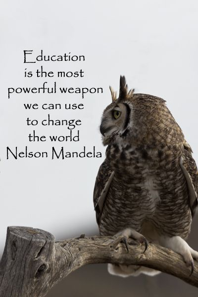 """Education is the most powerful weapon we can use to change the world."" -- Nelson Mandela --"