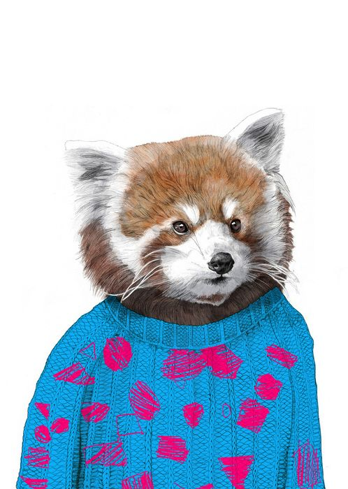 Red Panda by Jamie Mitchell also, check out that rad sweater!